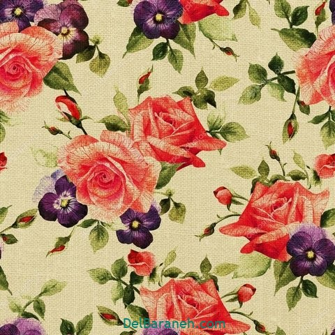 گل گلی (۲۲)