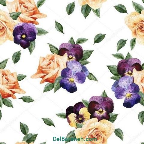 گل گلی (۲۳)
