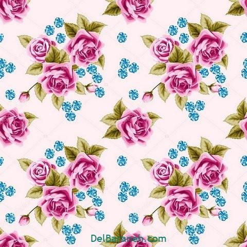 گل گلی (۲۶)