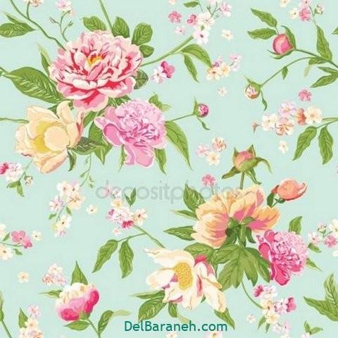 گل گلی (۲۷)
