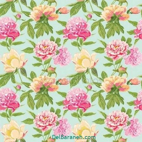 گل گلی (۲۹)
