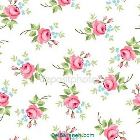 گل گلی (۳)
