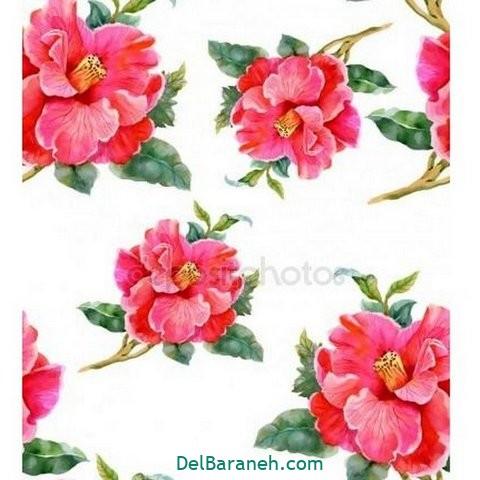 گل گلی (۳۵)