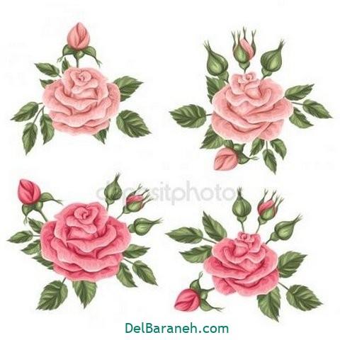 گل گلی (۳۶)