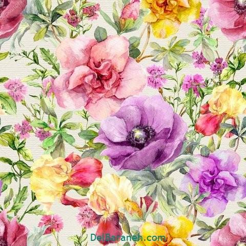 گل گلی (۸)