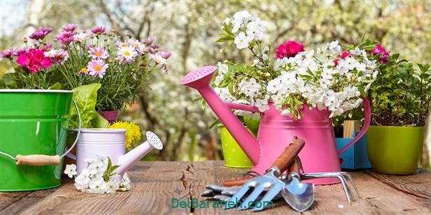 انشا درباره بهار (۱)