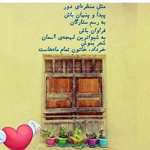 پروفایل خرداد (۴۴)