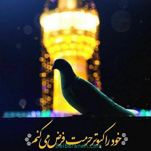 عکس نوشته امام رضا (۲۶)