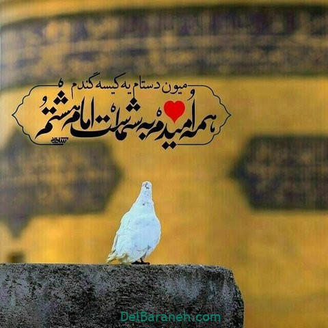 عکس نوشته امام رضا (۲۹)