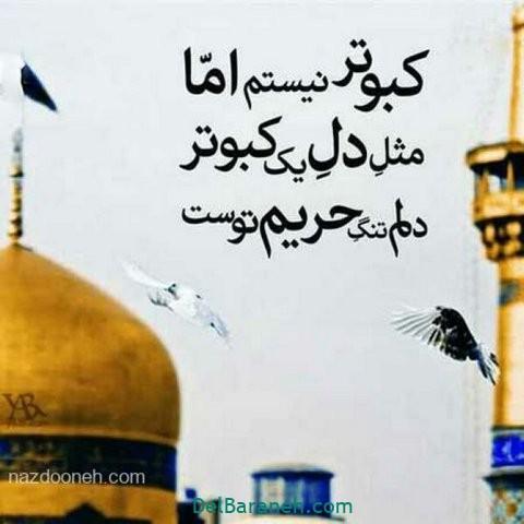 عکس نوشته امام رضا (۳۱)