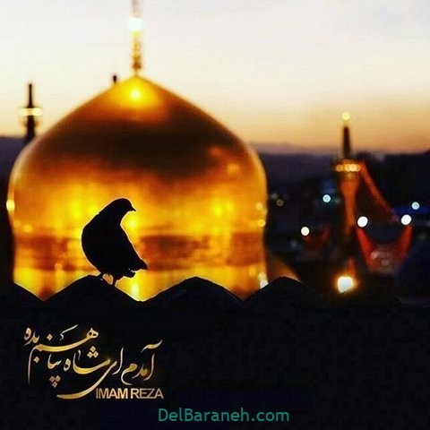 عکس نوشته امام رضا (۴)