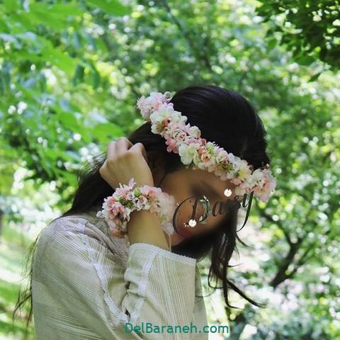 تاج گل طبیعی (۱۲)