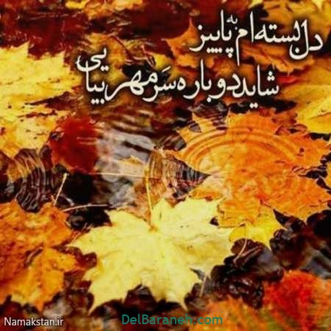 عکس عاشقانه پاییز (۲۲)