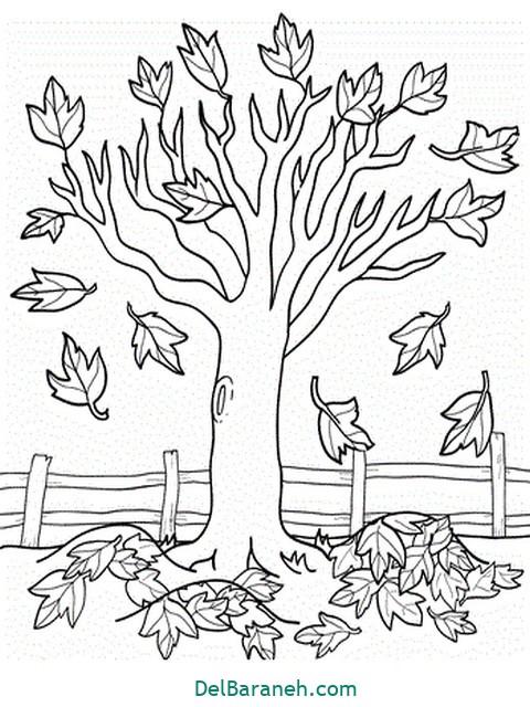رنگ آمیزی پاییز (۲)