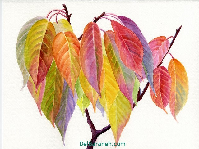 نقاشی پاییز کودکانه (۲۵)
