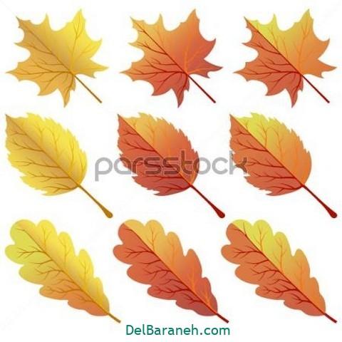 نقاشی پاییز کودکانه (۸)