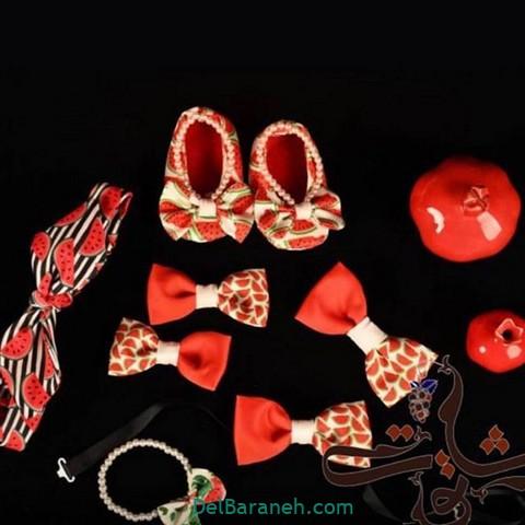 کفش بچگانه یلدا (۳)