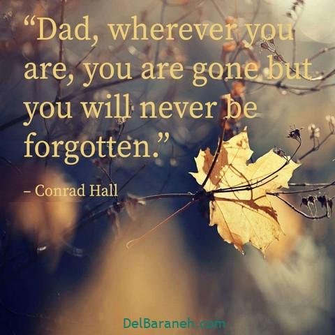عکس دلتنگی پدر (۱)