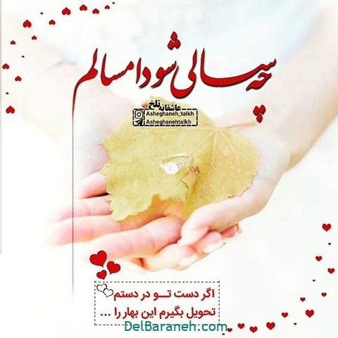 عکس عاشقانه عید نوروز (۳)