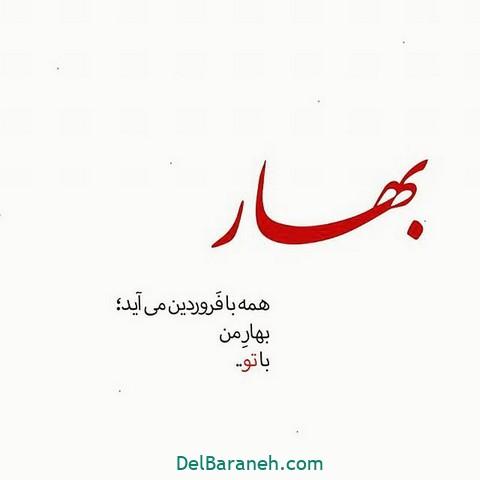 عکس عاشقانه عید نوروز (۹)