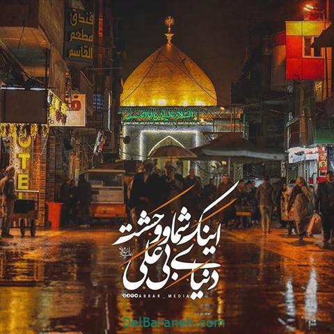 عکس شب قدر امام رضا