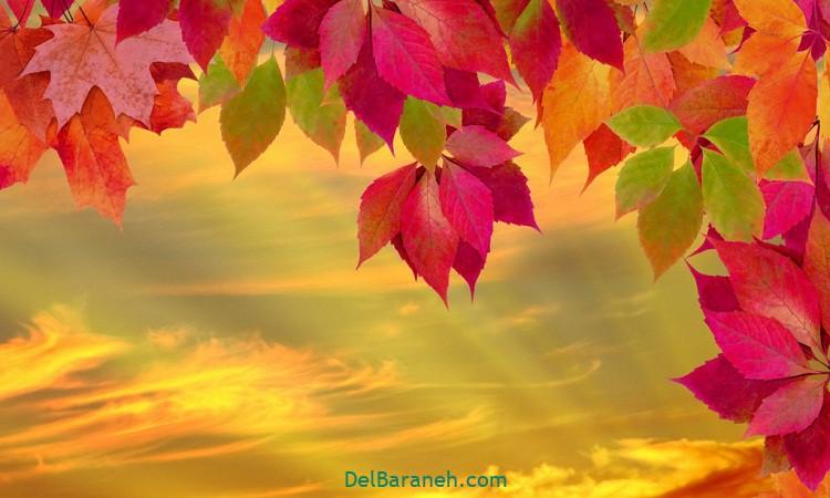 انشا درمورد پاییز پایه هفتم