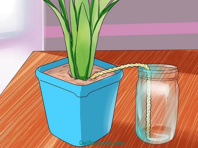 آبیاری گلدان در مسافرت (۱۰)