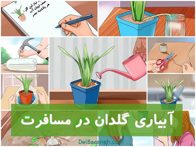 آبیاری گلدان در مسافرت