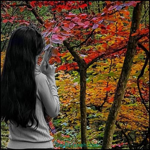 عکس دخترانه پاییزی (۲۹)