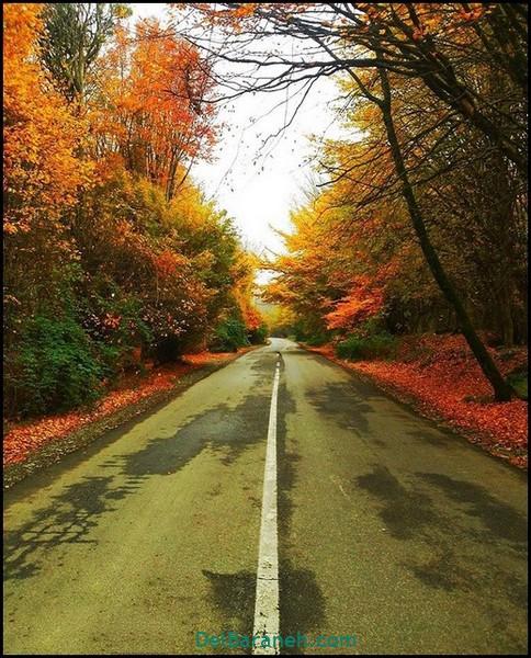 انشا کوتاه در مورد پاییز (۴)