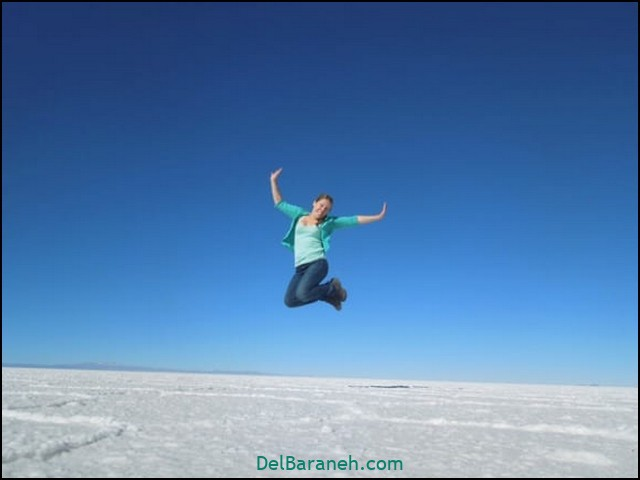 انشا در مورد پرواز بدون بال (۱۵)