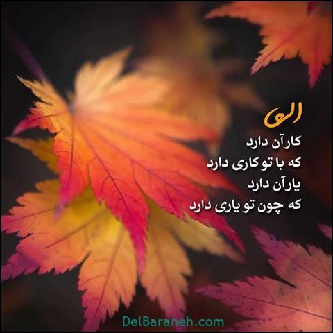 تصاویر پاییز (۱۴)