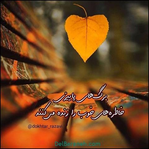 تصاویر پاییز (۶)