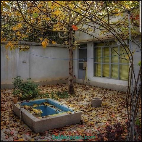 تصاویر پاییز (۸)