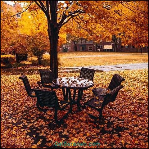 عکس طبیعت پاییز (۷)