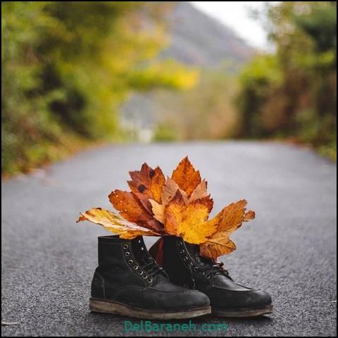 عکس پاییزی مفهومی