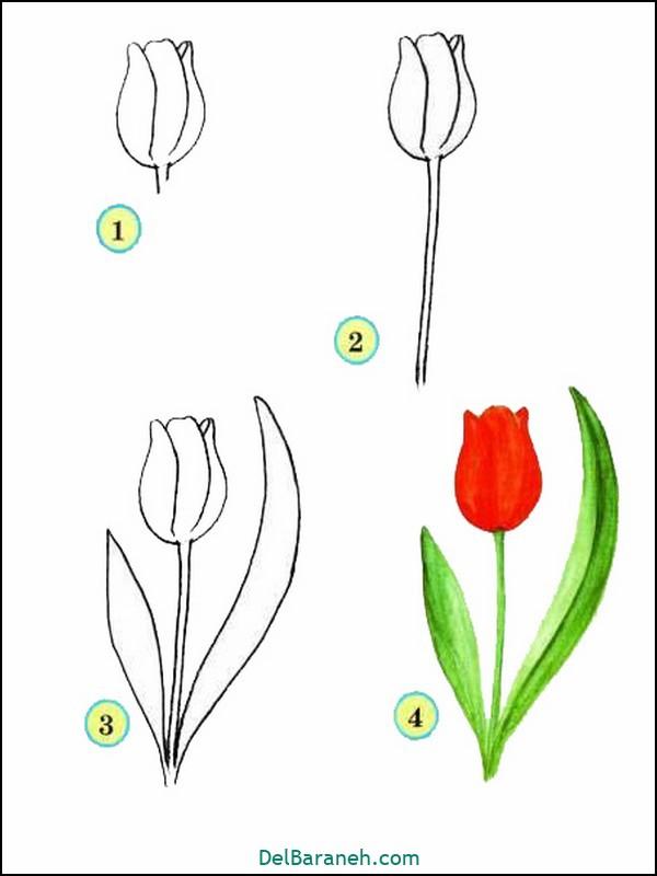 آموزش گام به گام نقاشی کودک (۵۶)