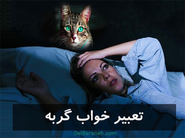 دیدن گربه در خواب