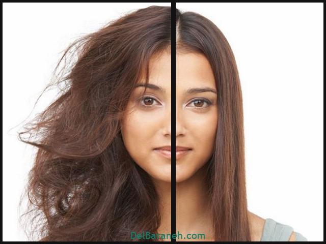 درمان خشکی مو و پوست (۵)