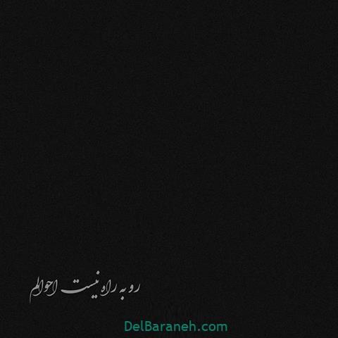 عکس سیاه برای پروفایل (۹۶)