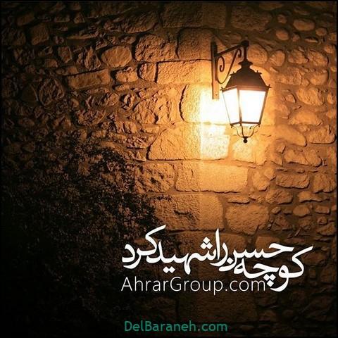 پروفایل شهادت امام حسن مجتبی (۲۸)