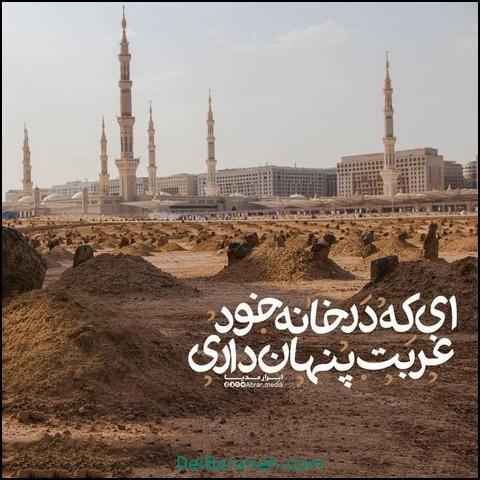 پروفایل شهادت امام حسن مجتبی (۴)