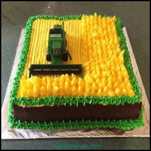 کیک روز مرد با خامه (۱۱)
