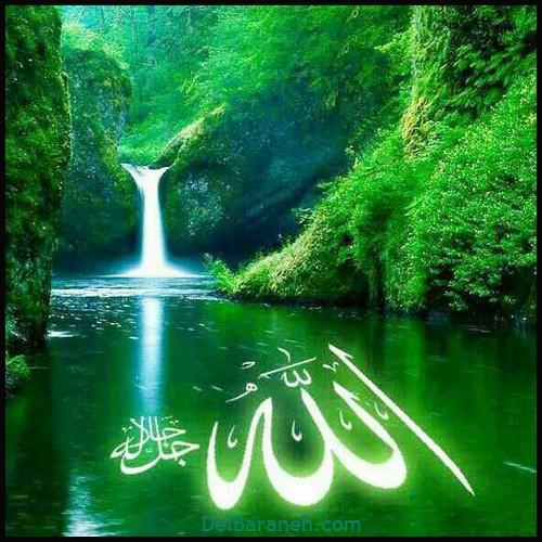 عکس الله (۶)
