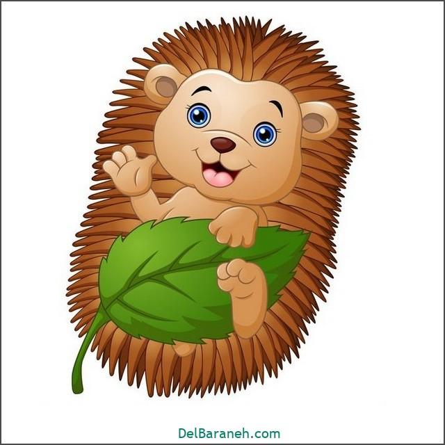 نقاشی جوجه تیغی برای بچه ها (۱)