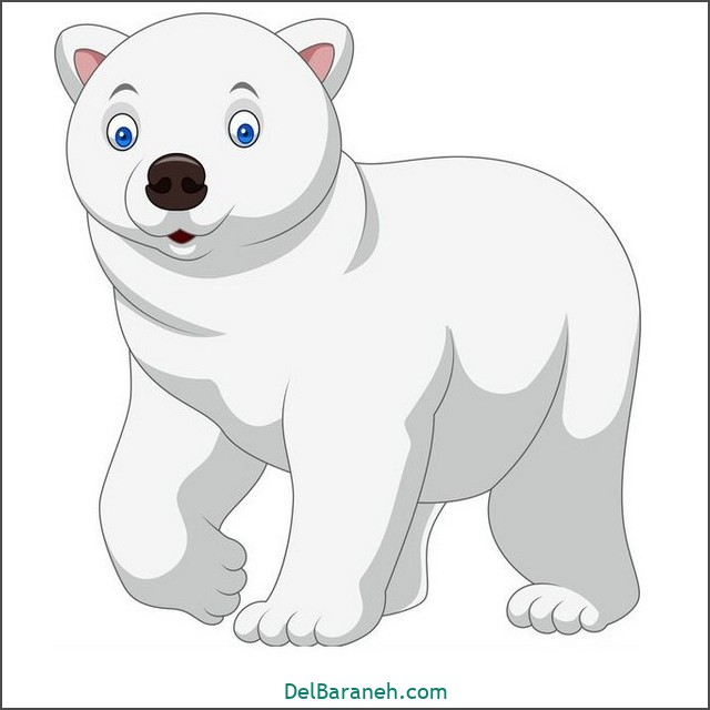 نقاشی حیوانات کودکانه (خرس قطبی)