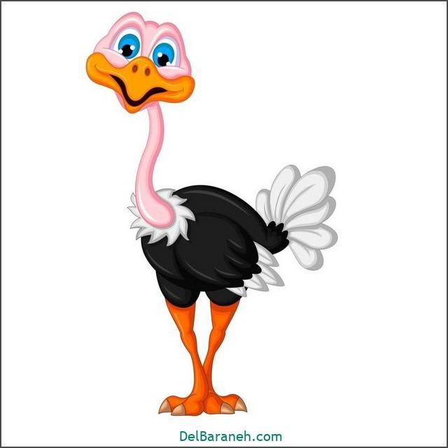 نقاشی حیوانات کودکانه (شتر مرغ)