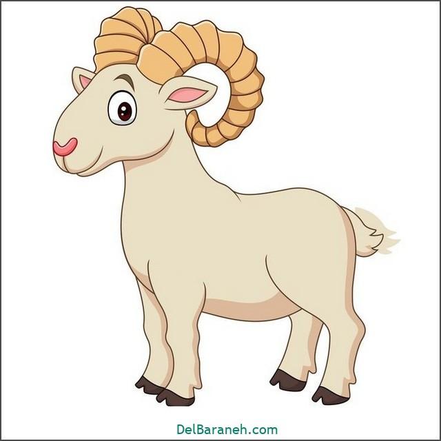 نقاشی حیوانات کودکانه (میش)