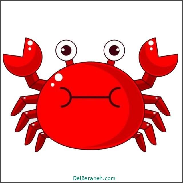 نقاشی خرچنگ برای بچه ها (۲)