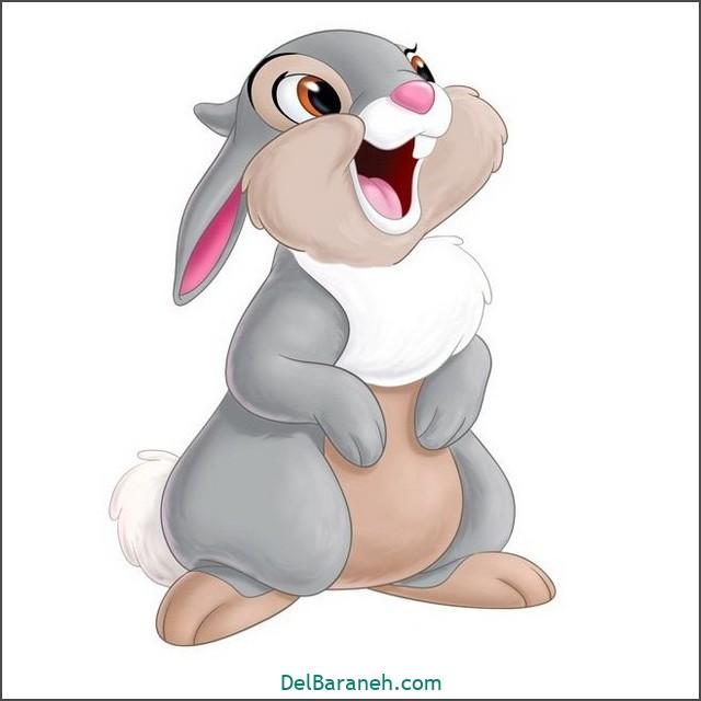 نقاشی خرگوش برای بچه ها (۲)